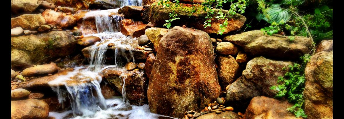 Living Waters Landscaping – Custom Water Features and Gardens in Asheville,  NC - Living Waters Landscaping – Custom Water Features And Gardens In