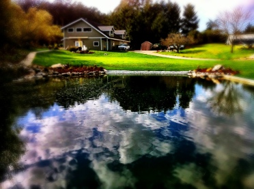 Clay Lined Pond and Landscaping