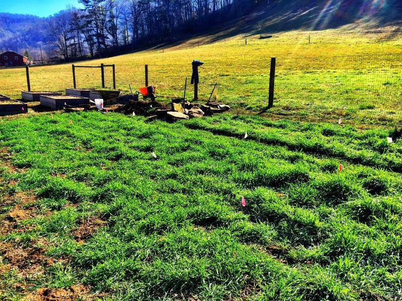 Asheville Landscaping